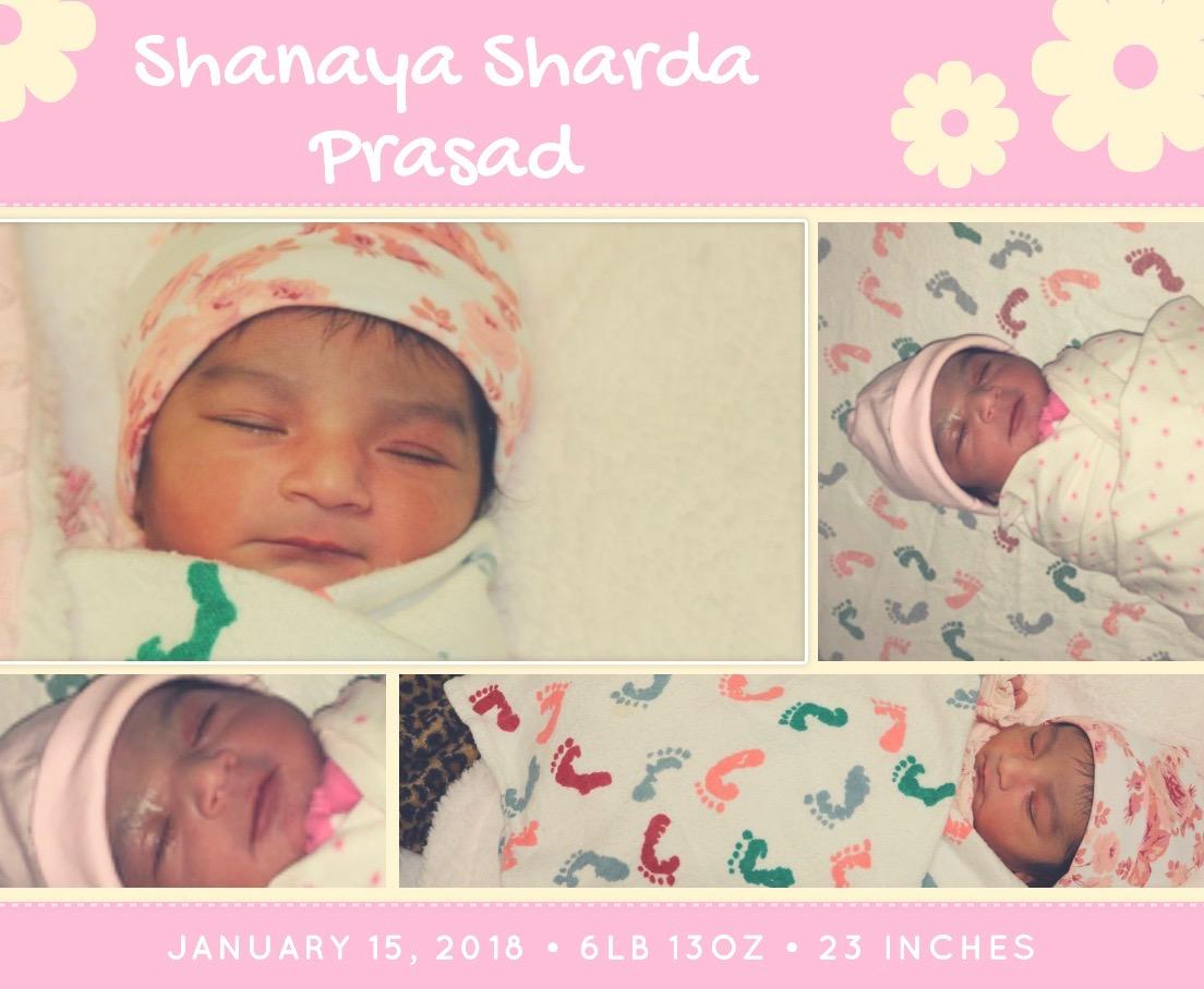 shanaya 3 (1)